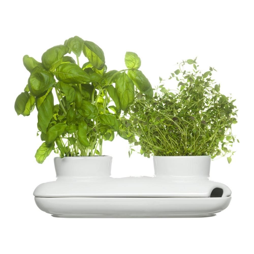 Herb Pot, Duo, Sagaform
