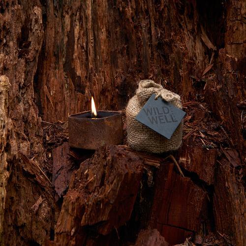 Cargo - Piñon wood & exotic spices