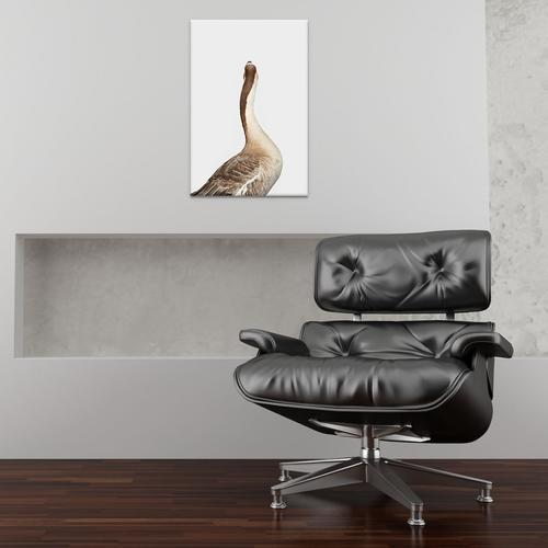 Toulouse Goose I