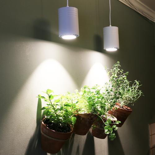 ASPECT 40W LED Pendant Decor Grow Light   White